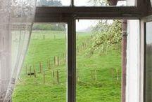 WINDOW VIEW / by Dick N Jan Breedlove