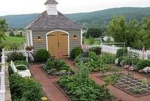 Gardening / by Leslie McCoy