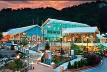 Attraction Information / by Visit Gatlinburg