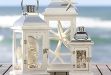 The Beach & Seashells / Seashells remind me of:  The sun, sand, waves, beach chair, umbrella, magazines, suntan lotion, beach towel, sunglasses, ice water, sun visor, Pepsi and snacks. My Favorite Vacation Time! / by Denise Diaz