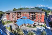 Hotels in Gatlinburg / by Visit Gatlinburg