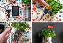 Get Crafty / Ways to use plants as fun crafts for elegant decor.