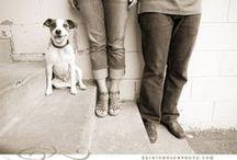 Pet Photos by Erin Johnson Photography / Pet Photos