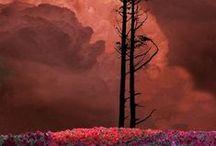 Dreamplaces / by Brynn Elizabeth