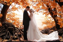 """Fall in Love"" Wedding Board"
