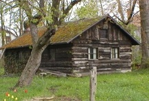 Cabins Standing Alone / by Renee Cordray