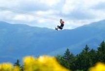 Classic NH Attractions / From the Auto Road and Aerial Tram to Strawbery Banke and Story Land, New Hampshire is filled with classic attractions that have been enjoyed by multiple generations of families. / by VisitNH.gov