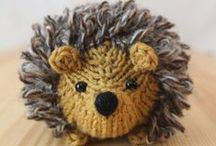 hedgehogs / they're spiky - and ever so cute
