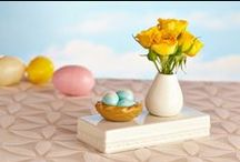 Spring is Blooming / Get ready for Spring with decor, flowers and accessories to brighten up your home this spring season.