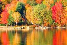 Scenic Views / Explore all of the perfect spots to enjoy New Hampshire's scenic views and autumn foliage.