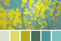 Design • Colors  / Great color combo's that I love to find and share!