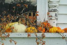 Fall / by Texie Brown