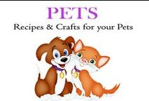 Pets / Fun Recipes, and toys for your pets!