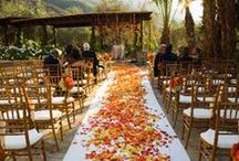 Fall Wedding Inspiration / Ideas, design, and products to make a perfectly magical fall wedding complete. Invitation ideas, ceremony decor, and reception entertaining, everything you need to help design your perfect fall wedding!
