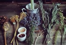 Herbal Potions and Remedies / Community board for budding herbalist and all natural recipes. This is a community board and we would LOVE for you to be a part of it! **No ads, duplicates & spam will be deleted.  To join, please email lovethelocalhippies@gmail.com Enjoy!!
