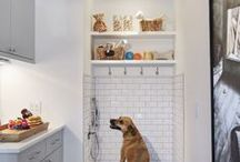 Designing For Pets / Cool and handy interior design ideas for your pets. Great products, cool ways to integrate crates and litter boxes into your home and your decor. Pet friendly living.