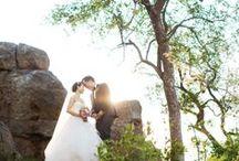 Safari Wedding Inspirations