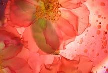 Floral Fervor / by Chris Norman