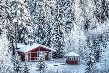 Winter Wonderland / Beautiful winter Pictures