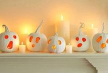 Halloween Pumpkins / by Holly Smally