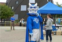 Our Favorite Devil! / A look into the life of Kizer the Blue Devil as he interacts with the CCSU community at sporting events and more! / by CCSU