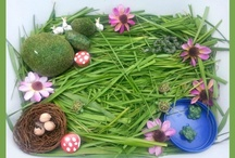 Spring Activities for Kids / Spring crafts, games, snacks and learning activities.