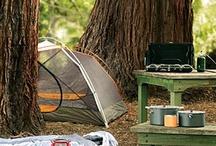 Gotta Go Camping! / by Claris Hostetler Schmidt