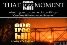 One Tree Hill...Always and forever / by Ashley Goins
