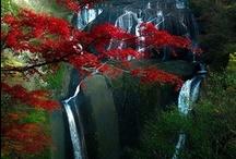 Beautiful Asia / by Lene Hansen