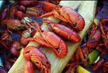 Crawfish / Pinch, peel, repeat. / by NOLA.com | The Times-Picayune