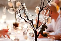 tables decoration  / by Monika Picard
