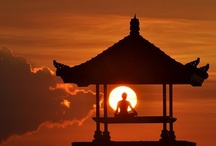 ~Meditation is the only way to reach the Higher-Consciousness.~