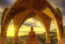 *~Buddha's Wisdom~*
