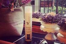 cosmetica naturale / cosmetica naturale cosmesi olio semi canapa hemp oil cosmetics cannabis sativa