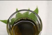 olio di semi di Canapa / olio semi canapa cannabis sativa hemp oil naturale