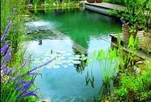 My garden inspiration- do zahrady