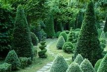 Jardin d'Amour / The romance of the gardens.