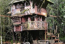 Treehouses / treehouses are the ultimate escape and a great way to commune with nature / by Brooke Candelaria