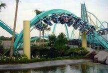 Roller Coasters / by Lara Springstead