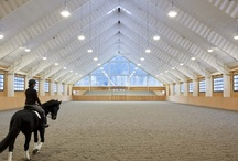 Dream Horse Barn  / by Judy Noordstra Rozema