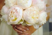 My Dream Wedding / by Melissa Schaeffer