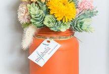 Flores que enamoran / rincones, flores, jardines que nos enamoran | mifabula.com