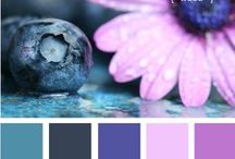 Color :: Palettes / design seeds= what a beautiful concept...