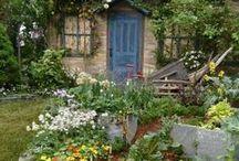 magic garden / by Kelly Matthews