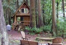 Our Dream Cabin in the Woods....