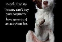 Puppy love / by Dawn Wellspring