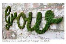 DIY Garden / by Malissa de Bruin