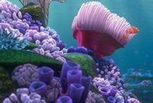 Undersea - Creatures & Places