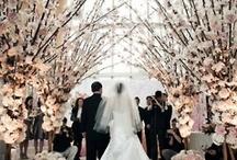 Weddings / by Alexandra