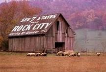 Rocky Top / #Tennessee #Nashville #Knoxville #Chattanooga #Gatlinburg #Johnson City #Smokey #UT / by Sandra Price